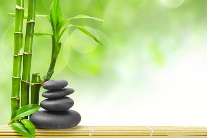 Bamboo Spa for more details call us at +91-98110-31749 Zen Wallpaper