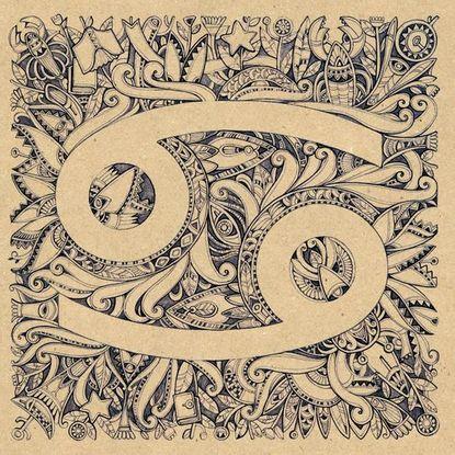 Rasteniya Dlya Rakov Rak V Goroskope Znaki Zodiaka I Znak Zodiaka Rak