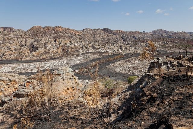 Isalo-Gebirge | Madagaskar