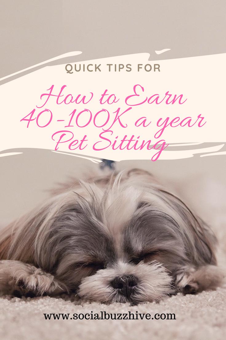 Build An Epic Online Business From Home Socialbuzzhive Com Miami Fl Pet Sitting Business Pet Sitting Jobs Dog Sitting Business