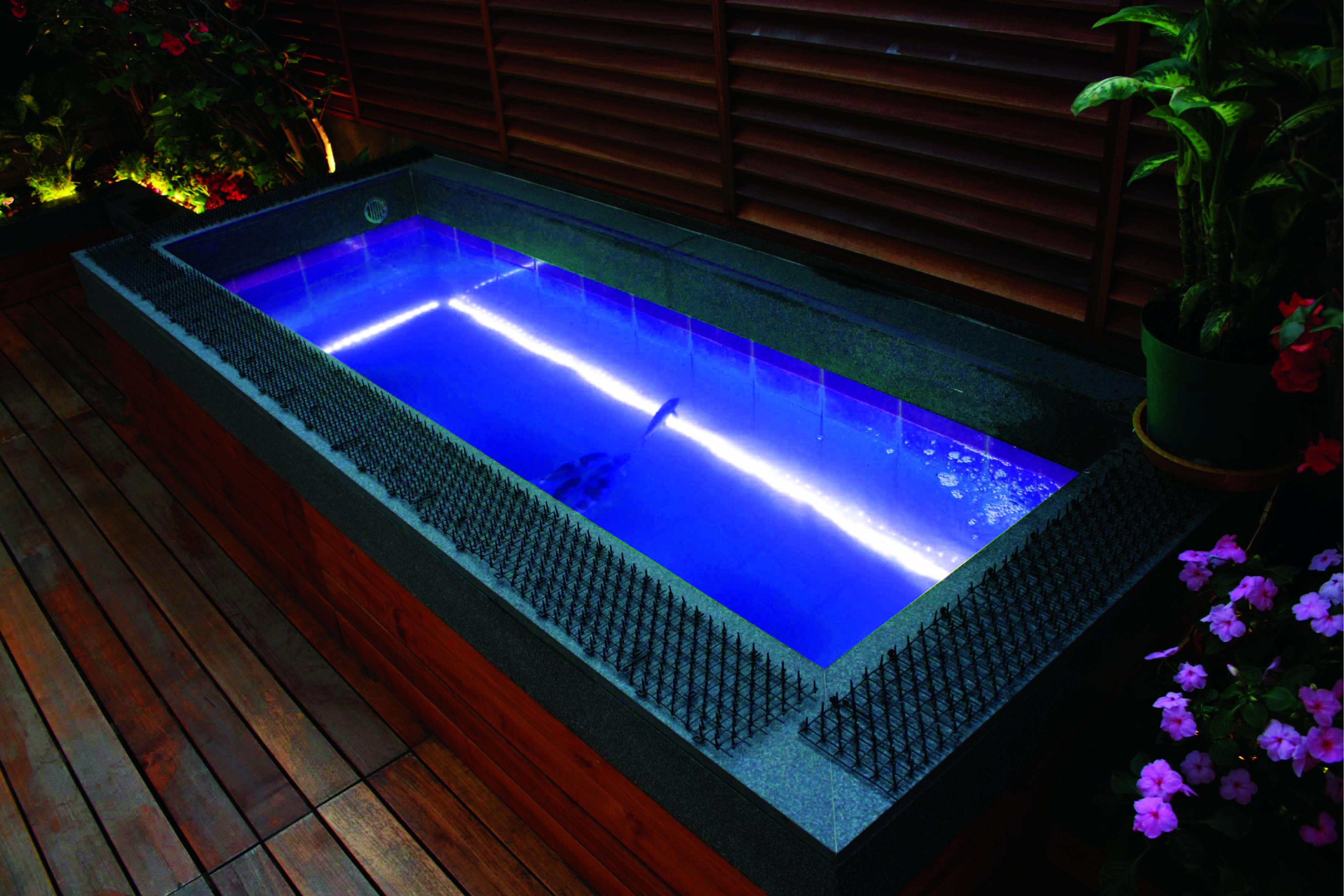 Unterwasser Poolbeleuchtung Mit Wasserdichtem Led Lichtband Ip68 Zertifiziert Chlor Uv Salzwasserbestand Pool Beleuchtung Poolbeleuchtung Led Led Lichtband