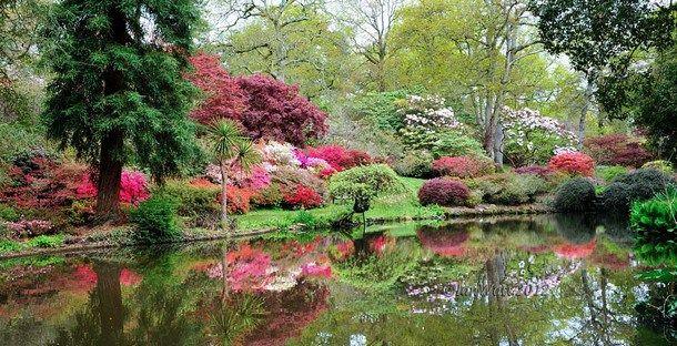 Exbury Gardens (Hampshire, England) | Famous gardens, Most ...