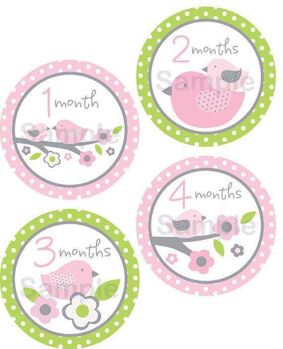 Cute Baby Bird Printable Monthly Milestone Stickers Bird