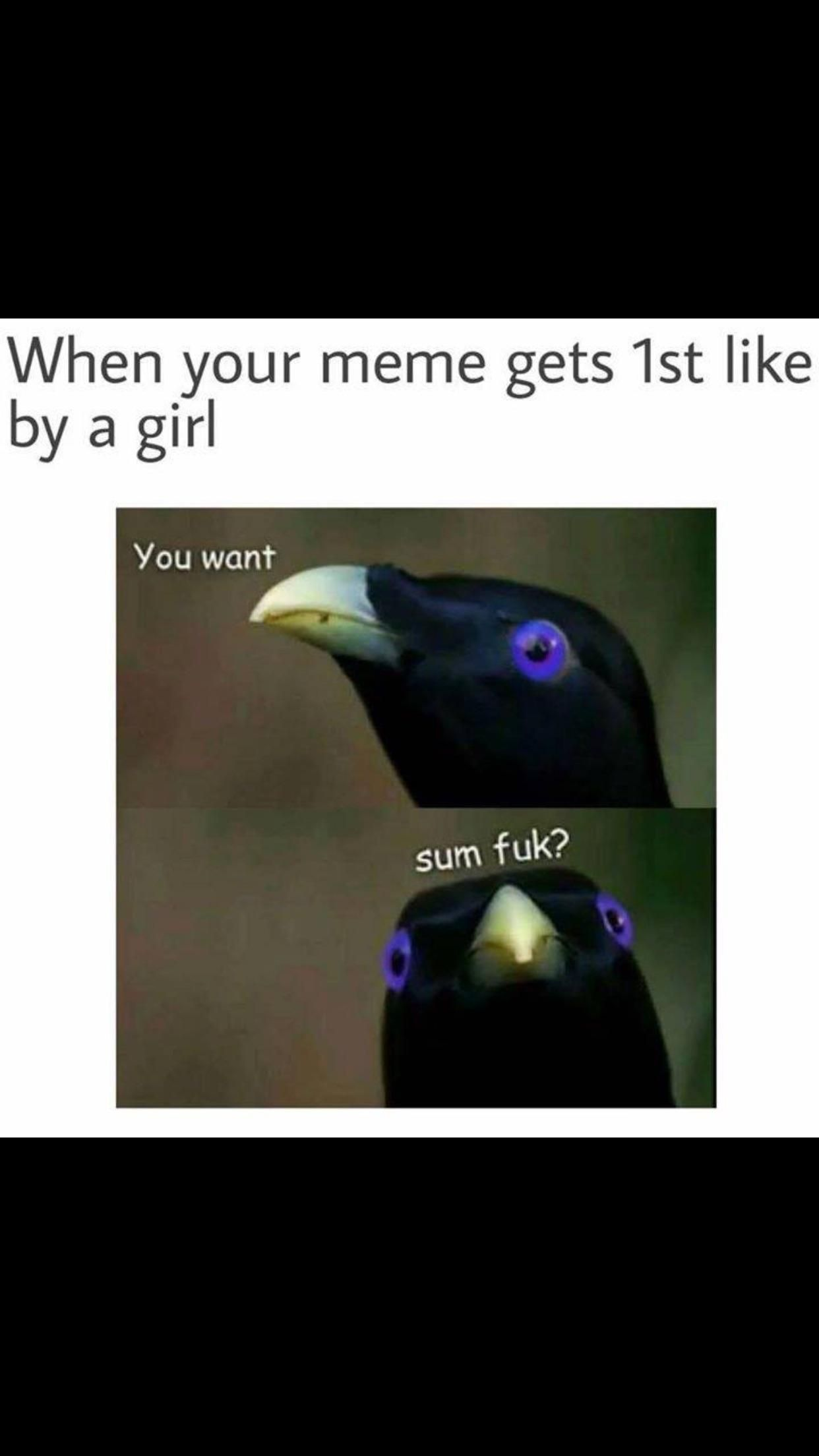 You Want Sum Fuk Gif 3