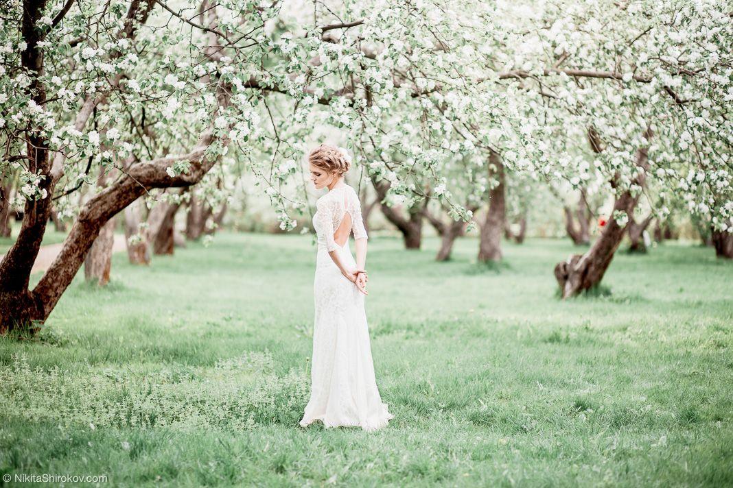 фотосессия в цветущем саду картинки момента своего