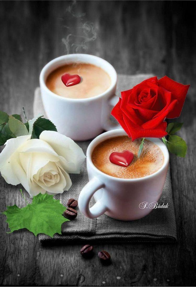 Das Wäre Jetzt Schön Ein Kaffee Mit Dir Gemeinsam Und Neben