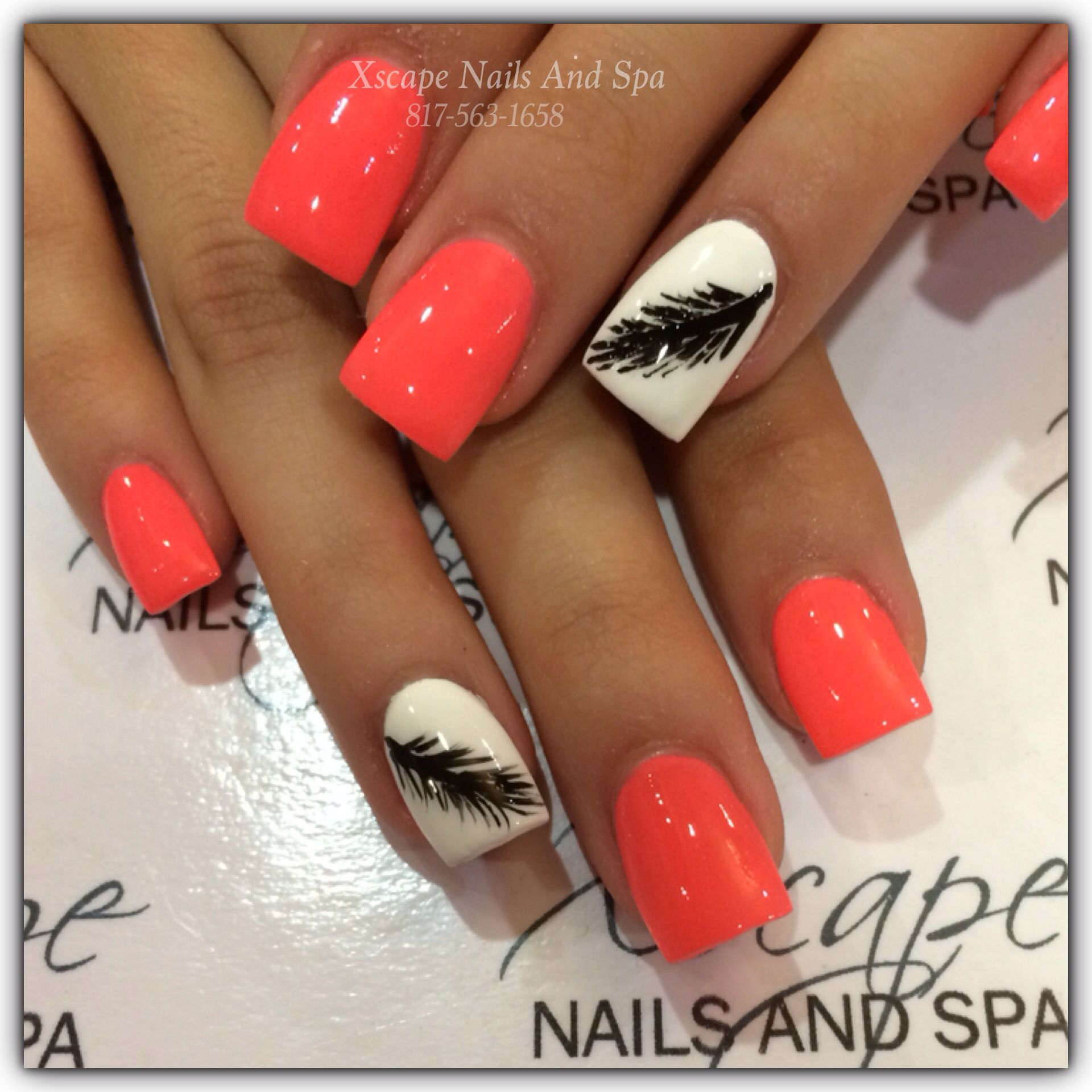 Feather nail design/ cute nail designs   Nails   Pinterest   Feather ...
