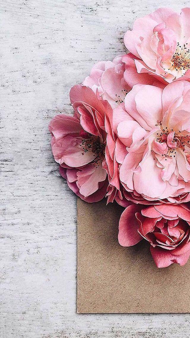 Nature wallpaper iPhone Цветочные фоны, Цветы, Красивые