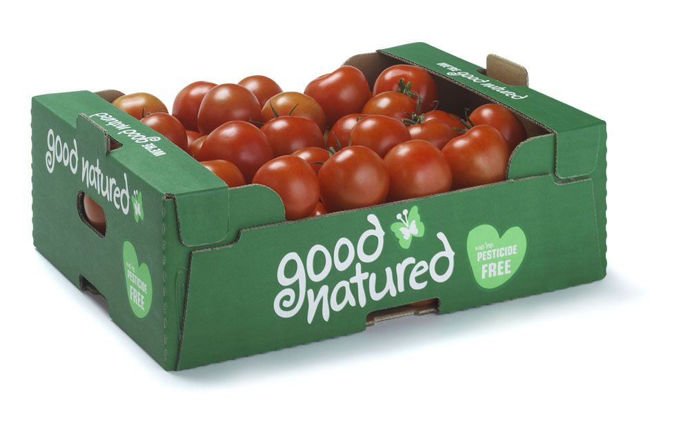 Corrugated Cardboard Fresh Produce Trays| Fruit and