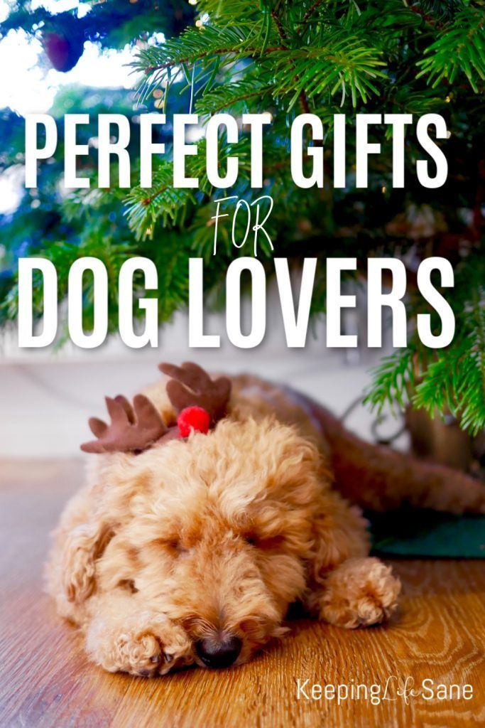 Everyone loves a cute puppy! Here's a great guide of gifts for dog lovers for any occasion. There are some cute ones here.