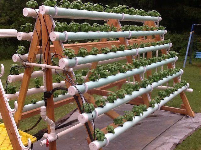 Como Hacer Un Cultivo Hidroponico En Casa Sistema