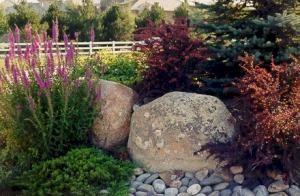 Landscape boulder Garden Ideas Pinterest Landscaping Yards