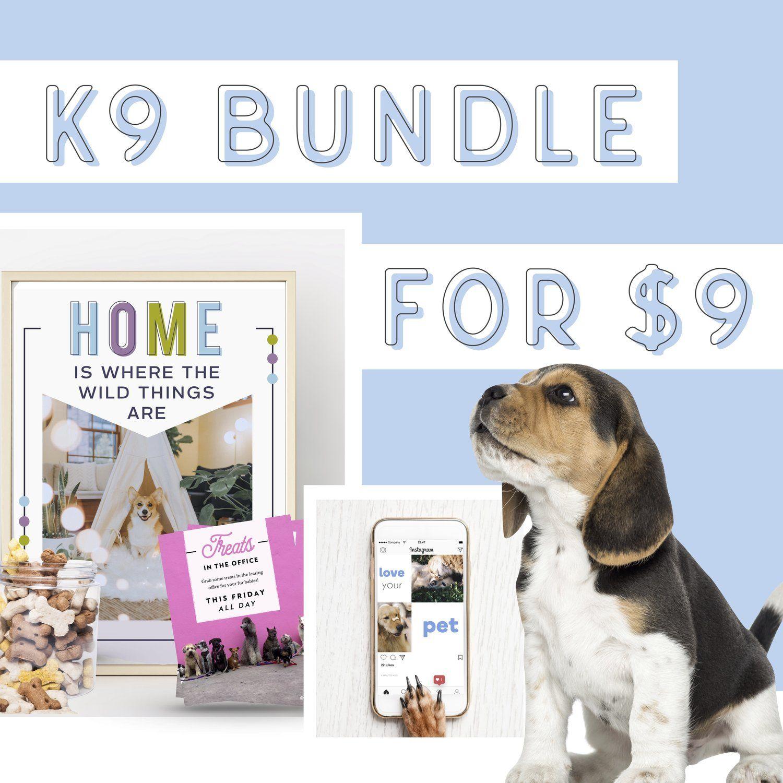 Pet Friendly Design Bundle For Apartment Pet Friendly Apartments Pet Friendly Pets