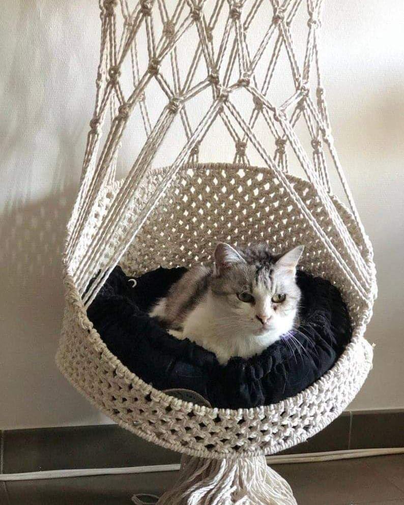 Animaux Cat Basket Animal Room Diy Cat Hammock