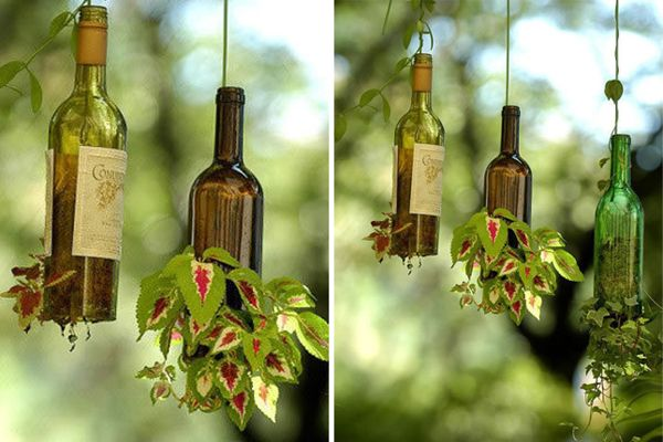 beer-bottle-hanging-planters