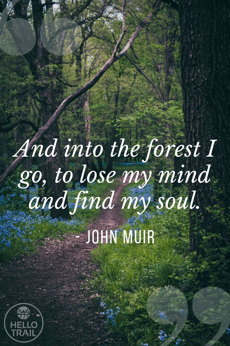 101 Hiking Quotes to Motivate You to Get Outside!