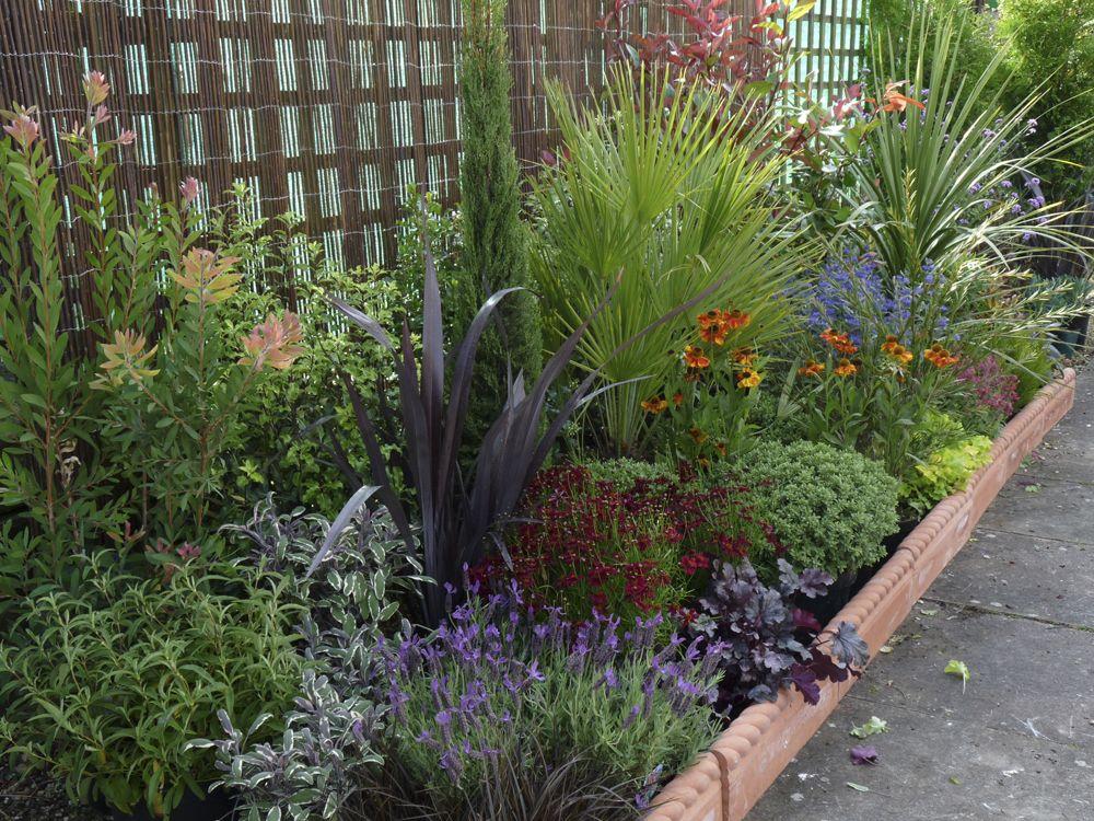 related image garden garden shrubs garden borders. Black Bedroom Furniture Sets. Home Design Ideas