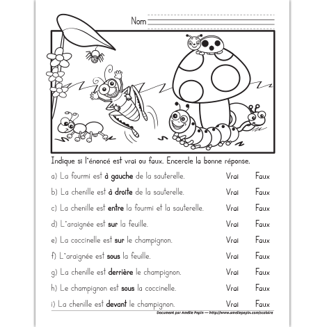 Concept Spatial Avec Les Insectes French Worksheets French Education Teaching French