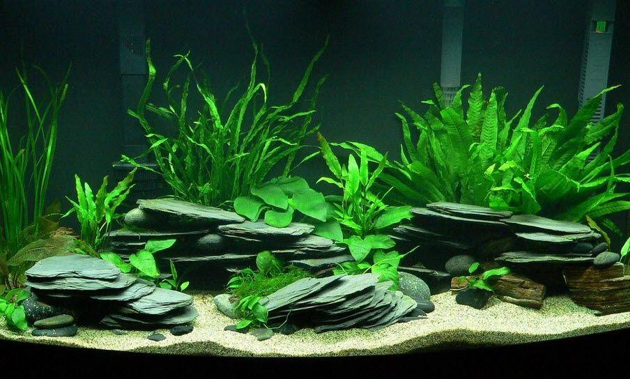 Diy stacked slate caves fish aquarium for Fish tank caves