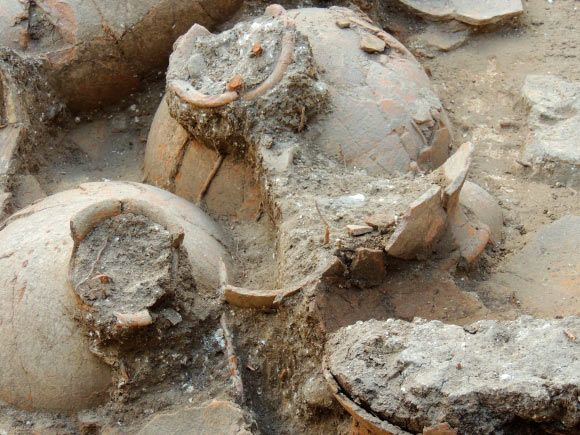 These jars were unearthed in a palace in the Canaanite city of Tel Kabri. Image credit: Eric Cline / George Washington University.