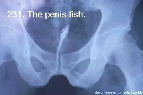 Grey S Anatomy With Images Anatomy Quote Grey S Anatomy