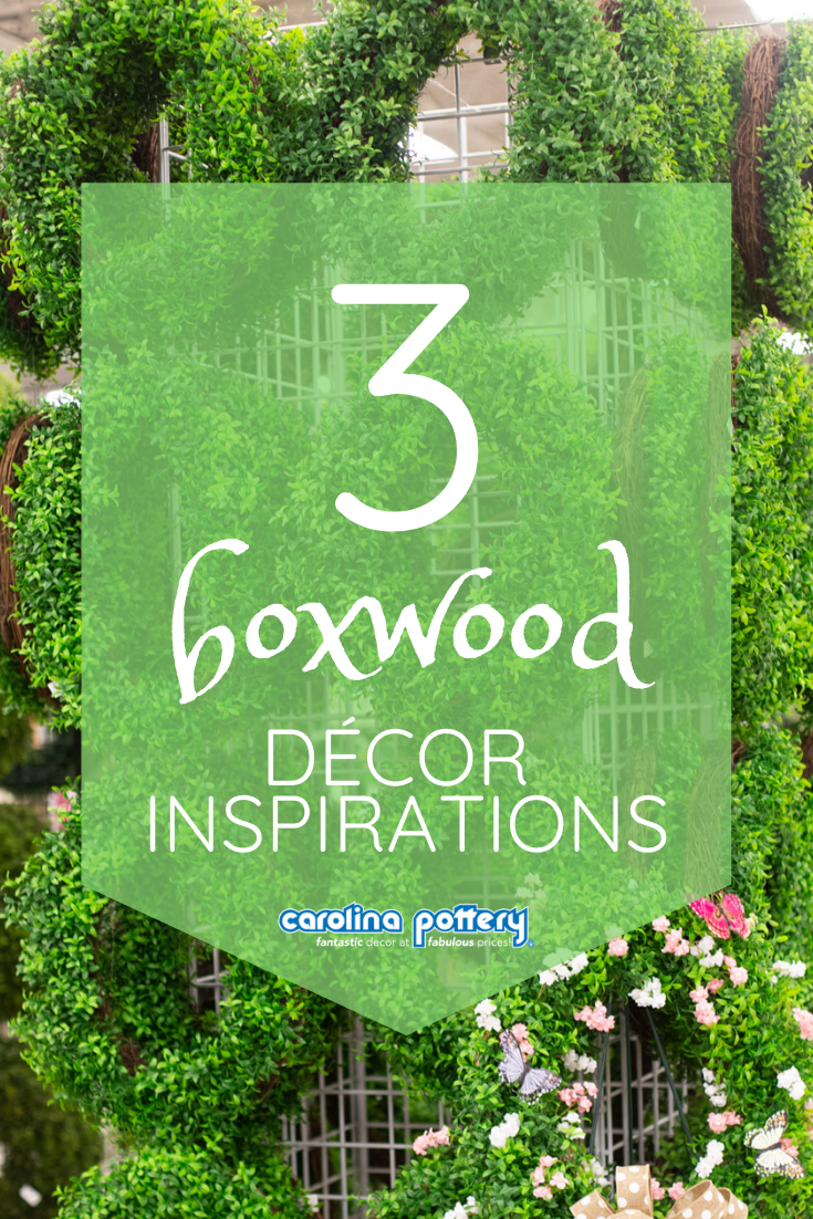 Carolina Pottery Blog What's Hot: Boxwood Greenery - Popular Boxwood wreaths and plants to freshen up your home! . #carolinapottery #carolinapotteryblog #homedecorblog #diydecorblog #decoratingblog #blog #blogpost