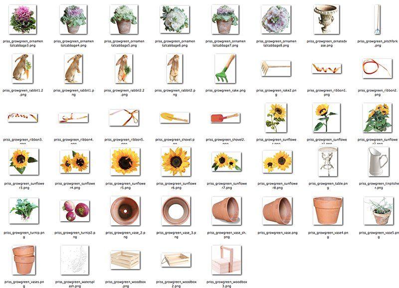 Scrapbookgraphics.com :: Kits :: Grow Green - THE KIT