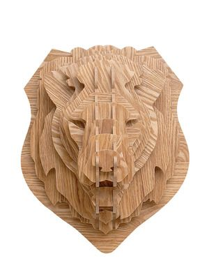 Lion Head by Biofires on Gilt Home