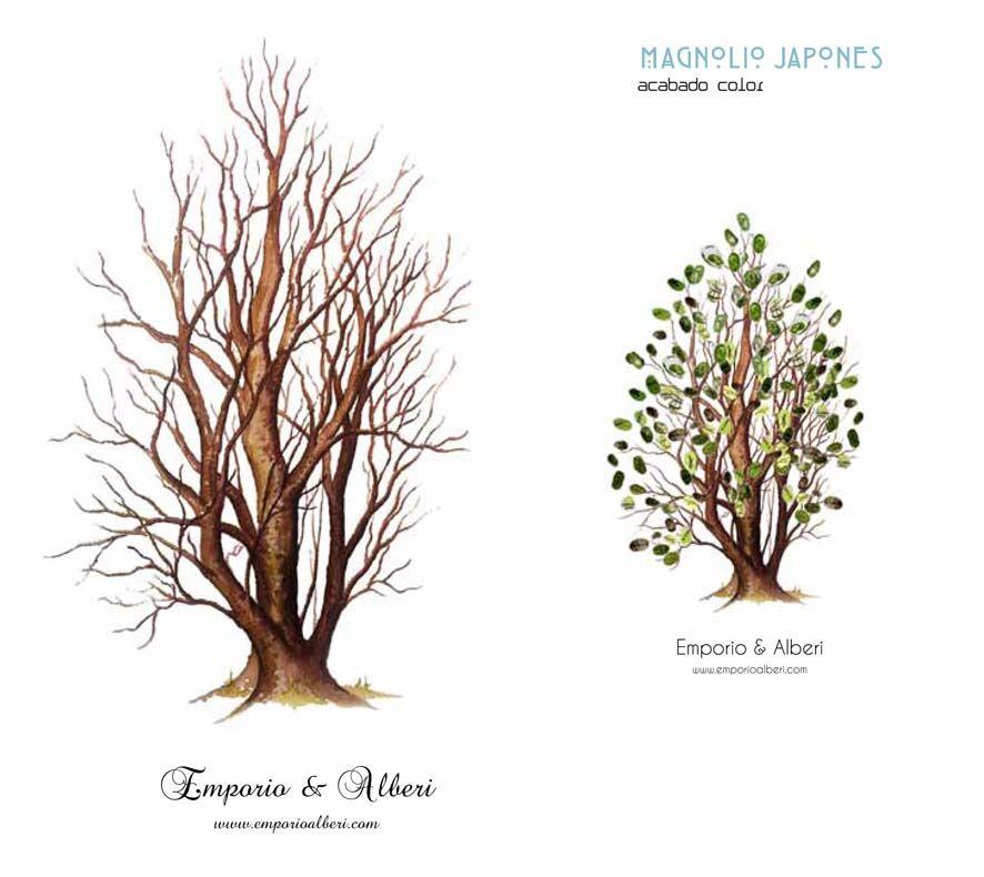 Magnolio japonés. De 80 a 130 huellas. Cuadro de huellas / Árbol de huellas www.emporioalberi.com