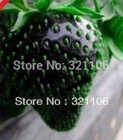 200 semillas semillas HERMETIC paquete negro fresa envío gratis