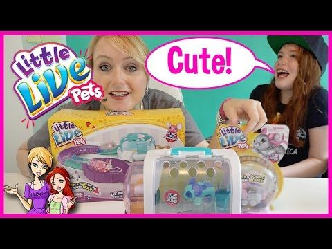 Little Live Pets Lil Mouse House Trail Track Set Tubes Baby Mice Moose Toys Review Disneycartoys Youtube Little Live Pets Pets Baby Mouse