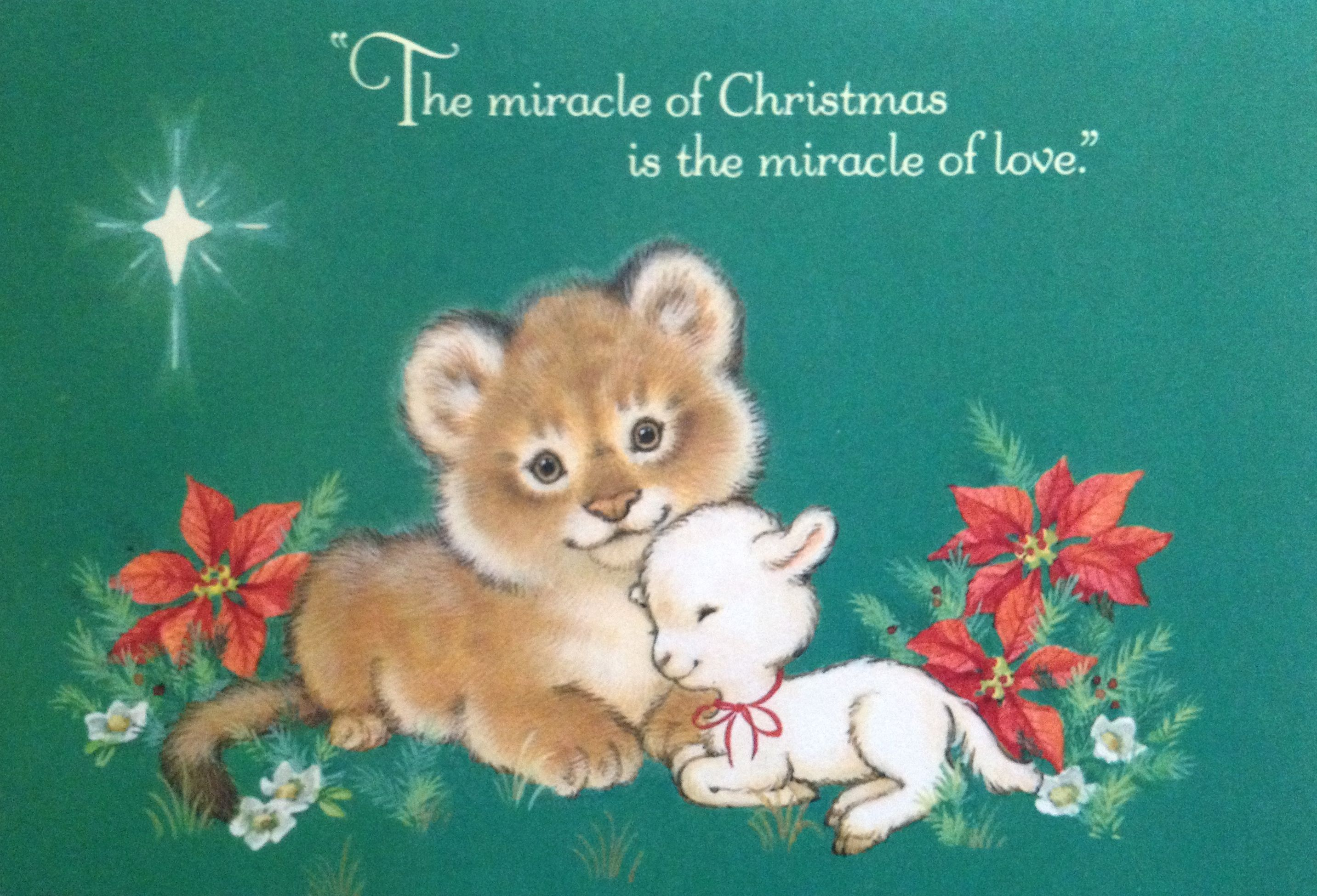 Luxury Lion And Lamb Christmas Cards Image - Christmas Decoration ...