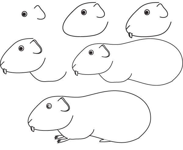 Dessin cochon inde dessine moi un mouton pinterest - Cochon a dessiner ...