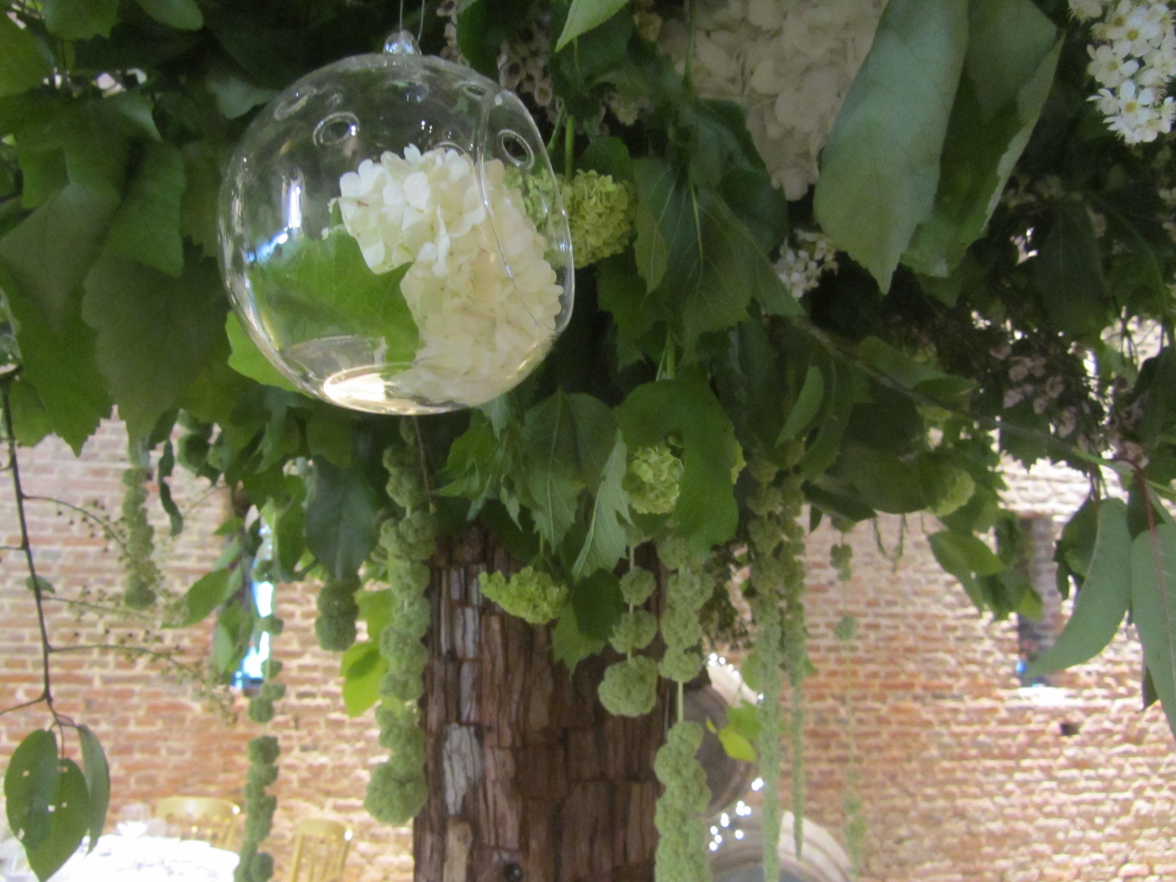 Dotted around the giant tree were little hanging balls with blossom inside.
