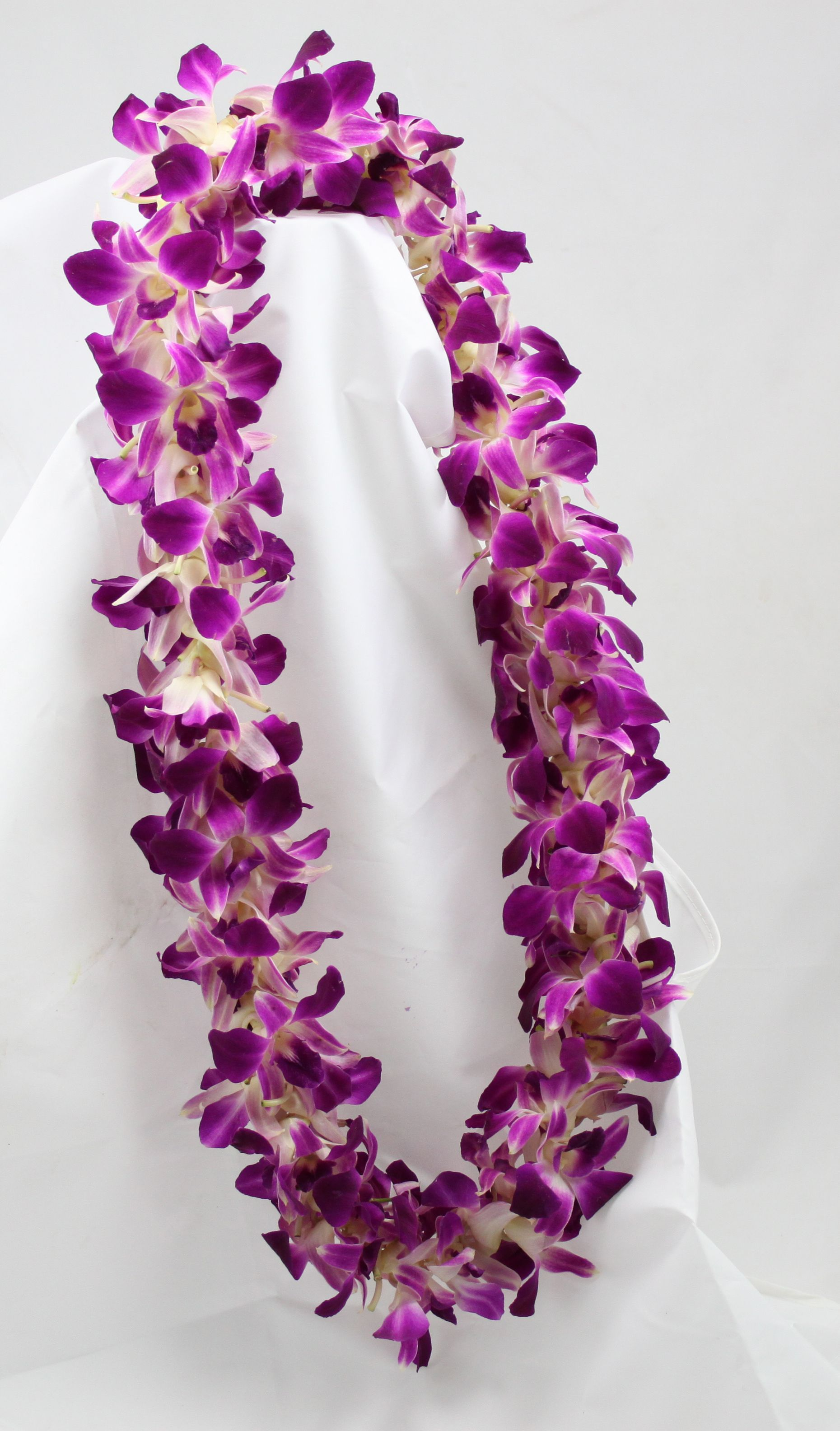 Dendrobium Orchid Leis Dendrobium Orchids Plumeria Flowers Orchid Lei