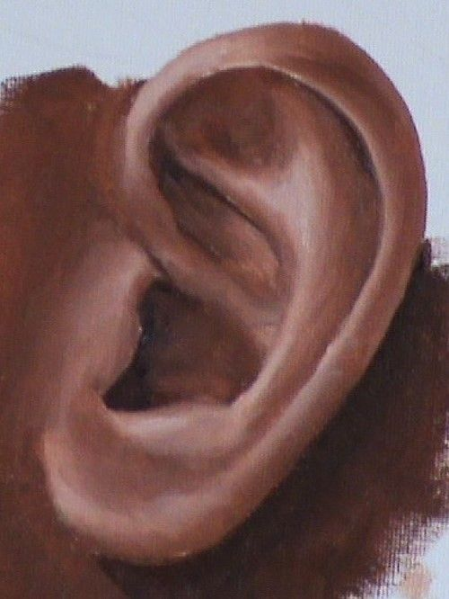 Free painting lesson - How to Paint Ears and Hair in Oil — Online Art Lessons