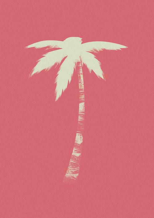 Illustrated Palm Tree Palm Tree Art Palm Trees Tree Art