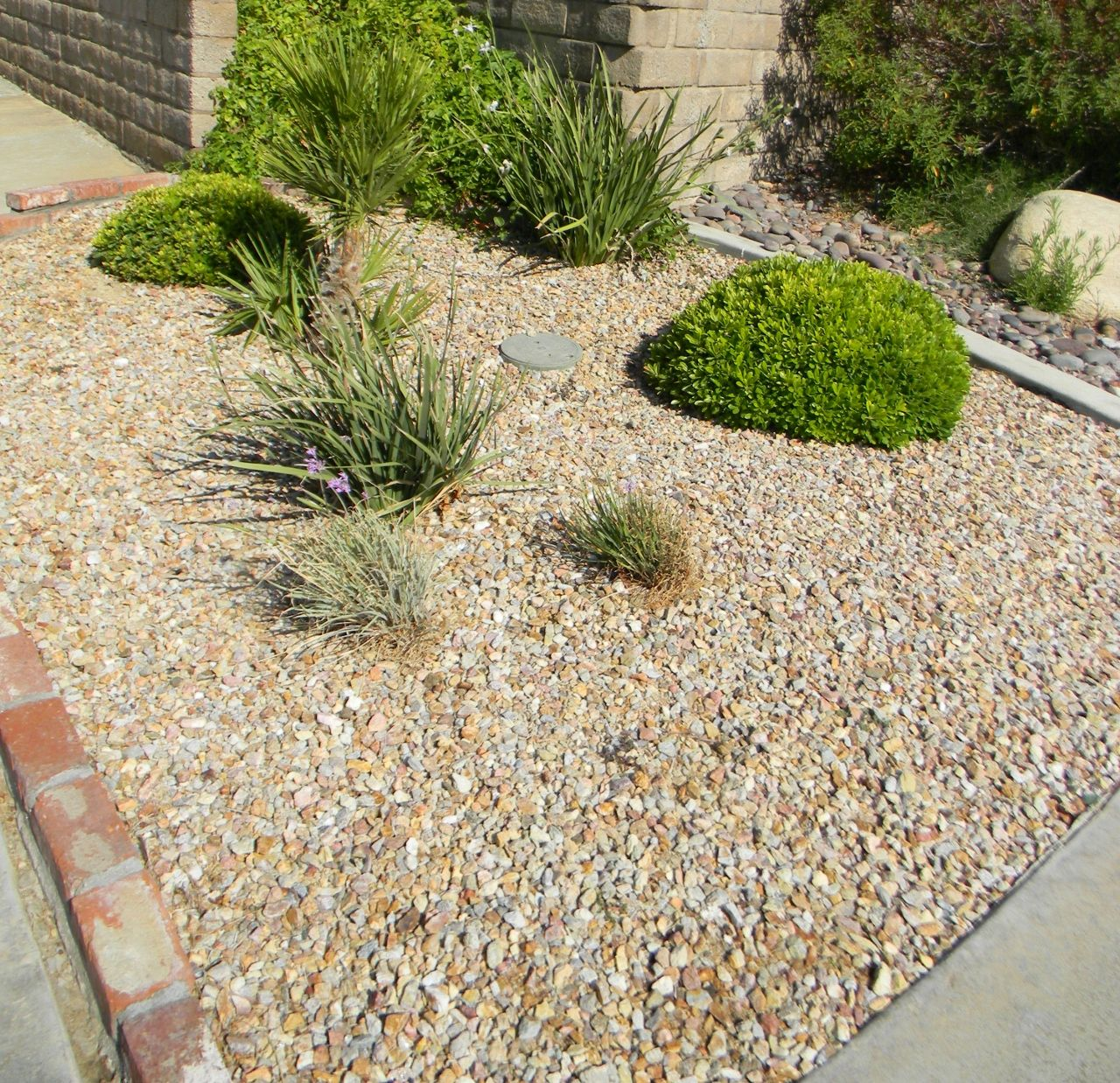Palm Springs Gold Gravel 3 4 This Is One Of The Single Most