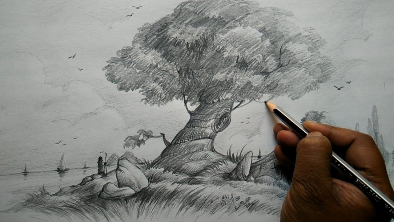 How to Draw a Big Tree at House and Composition for