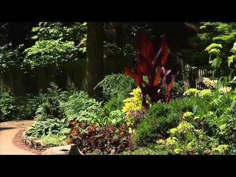 Robyn Brown Perennial Garden Volunteer Gardener Perennial Garden Long Blooming Perennials Perennials