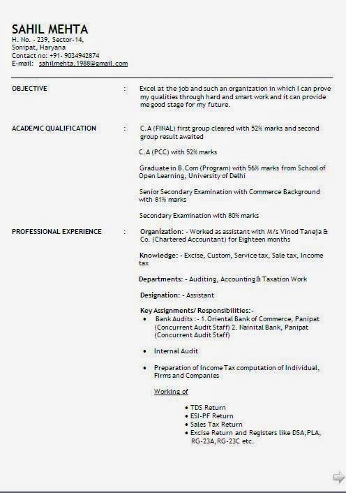 curriculum vitae forms Sample Template Example ofExcellent - sample audit program