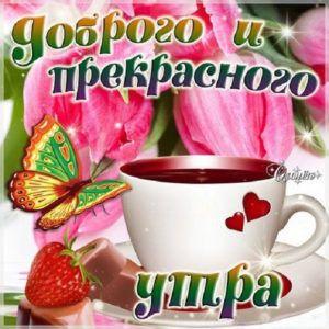 утро чай цветы зима