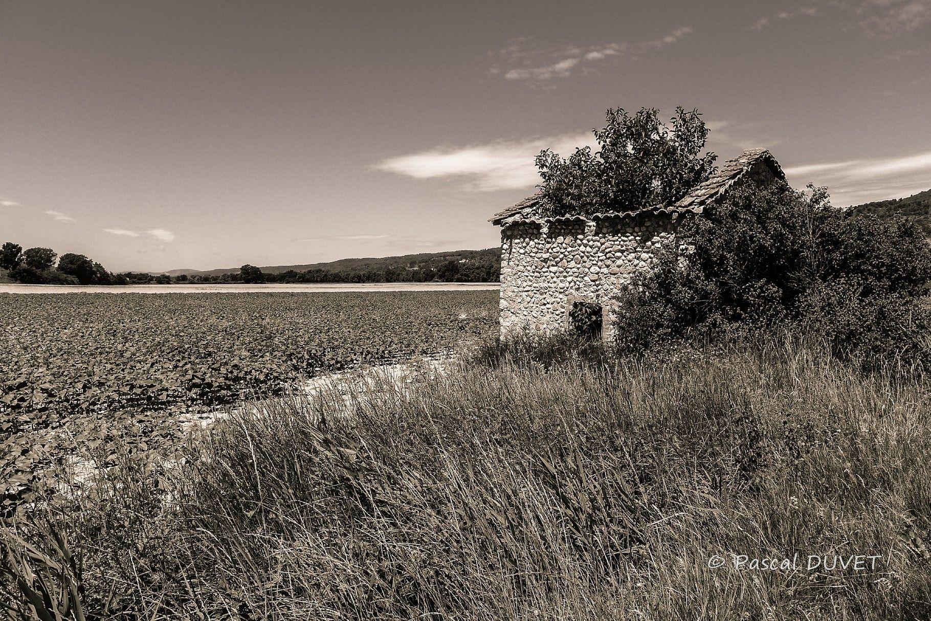NBG53 - Cabanon dans la vallée de l'Asse - Alpes de Haute Provence 04
