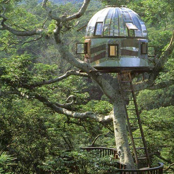 Coole Baumhäuser · Haus Bäume · Treehouse Masters | ... Tree House 8600 600  Tree + House U003d Pete Nelson