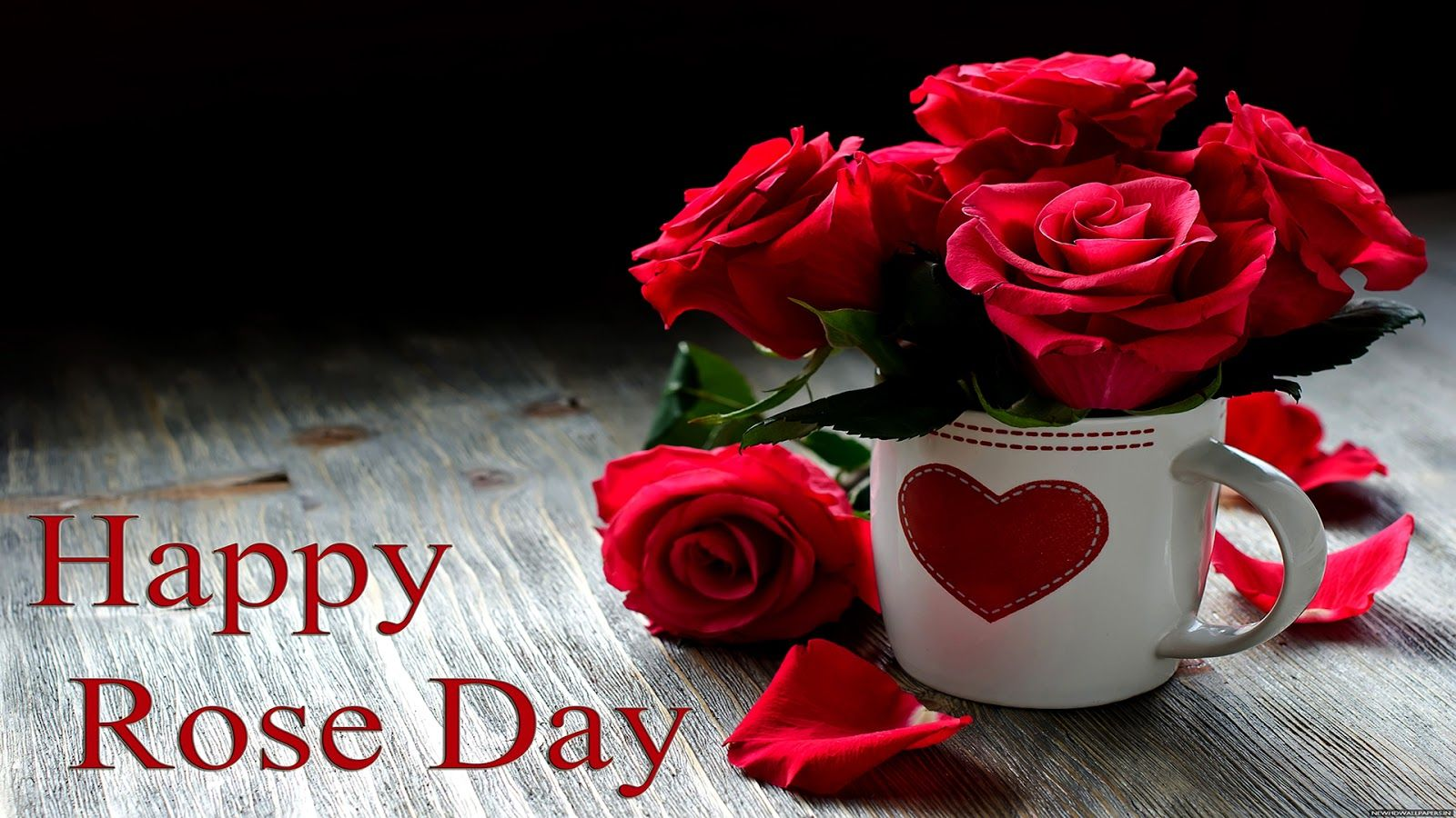 Happy Rose Day Wallpapers Hd Download Free 1080p Happy Rose Day Wallpaper Rose Day Wallpaper Good Night Wallpaper