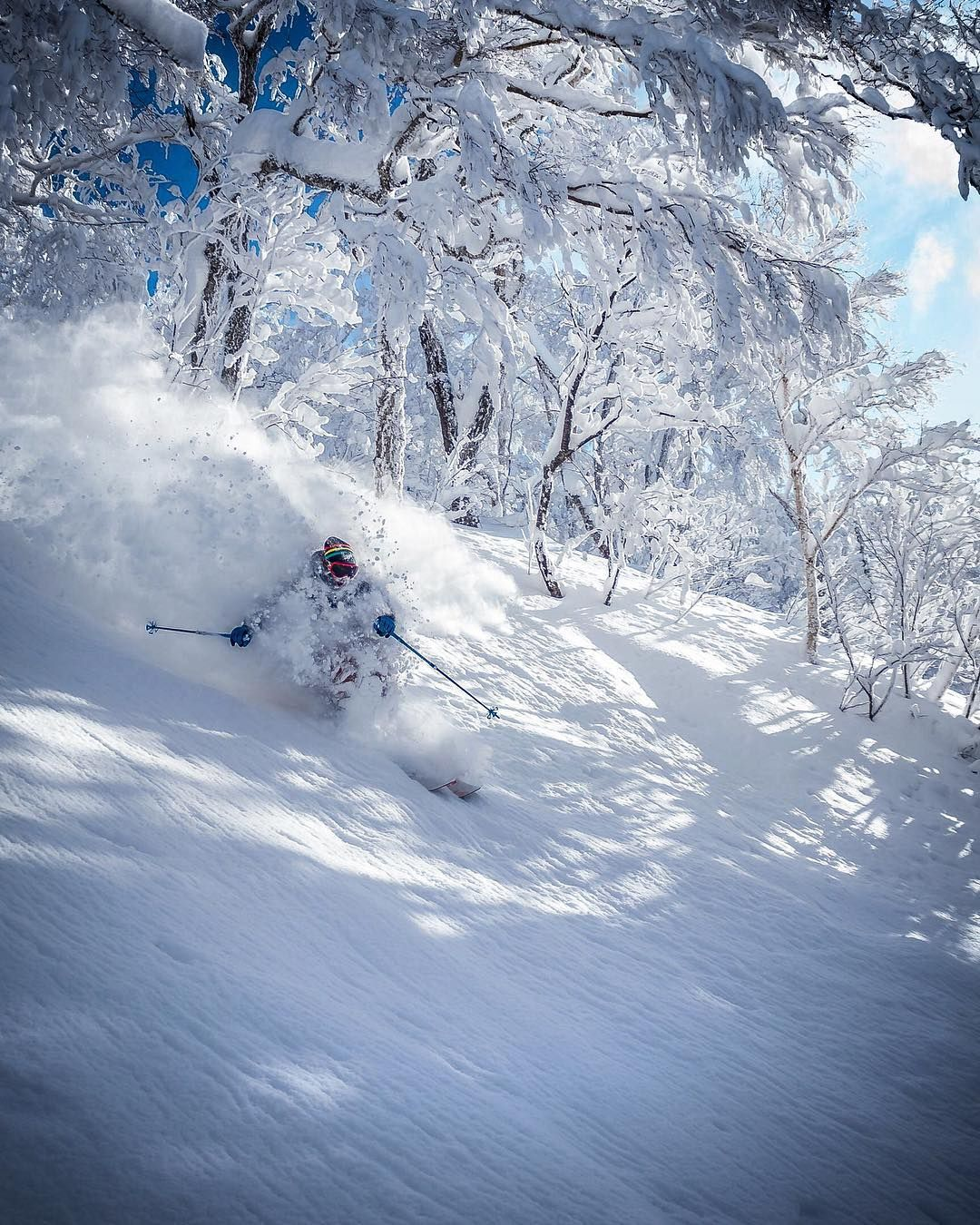 Pin by Bowsquat on Ski bummin' Free skiing, Alpine