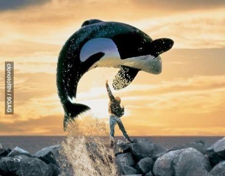 When im bored I like to upper cut a whale