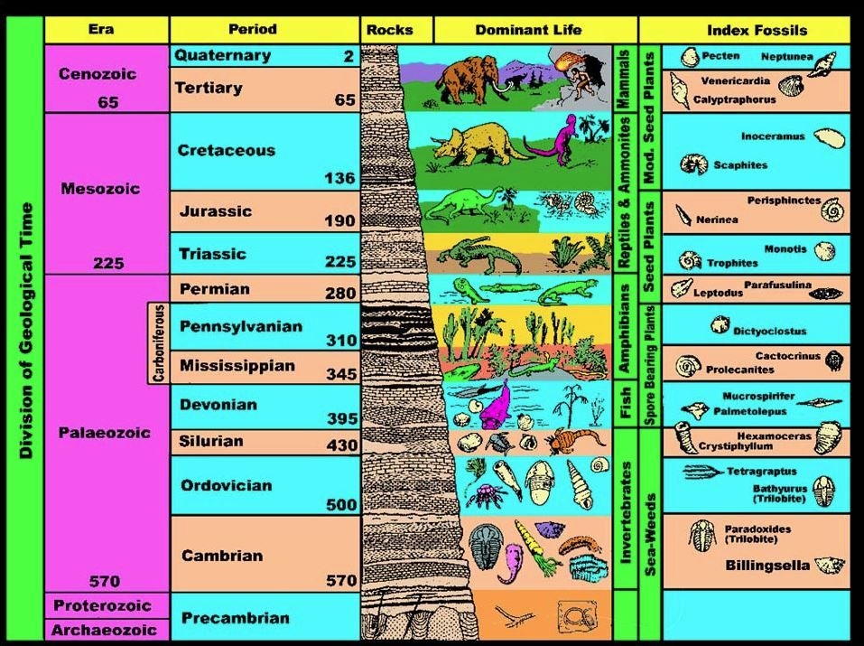 geologic time scale coloring pages - photo#6