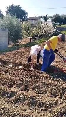 So wird Klopapier richtig gepflanzt  #funnyvideos
