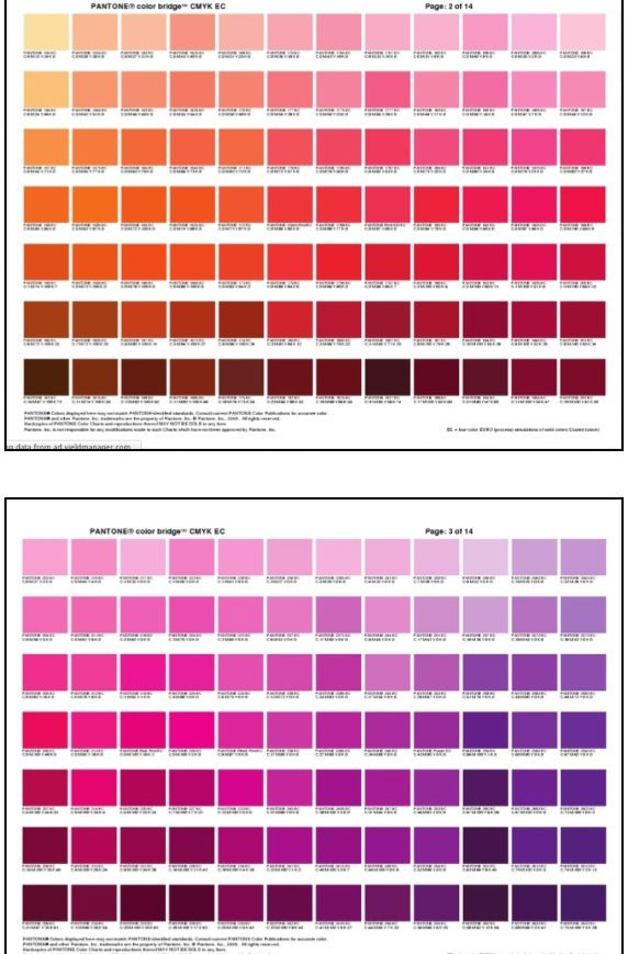 Color Chart Pink Purple Orange